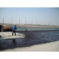 橋面防水廠家 專業生產橋面防水粘結層