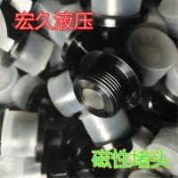 宏久液壓供應DIN910公制螺紋尖角槽組合墊密封外六角磁性堵