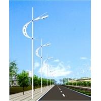 單臂路燈,雙臂路燈定制,就在天街照明