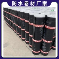 SBS自粘防水卷材廠家直發 廠家價格