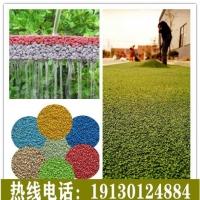 自貢彩色透水地坪藝術、生態透水混凝土