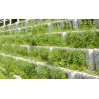 阶梯式生态护坡混凝土河道护岸