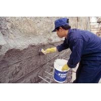 供应xypex赛柏斯修补堵漏剂,专业修补各和裂缝及渗漏