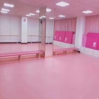 供应北京舞蹈地胶 儿童舞蹈地胶板颜色