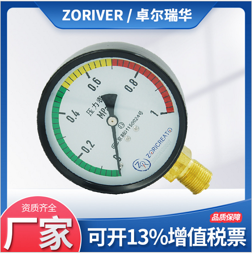 軸向帶邊嵌裝y60碳鋼噴塑殼普通壓力表