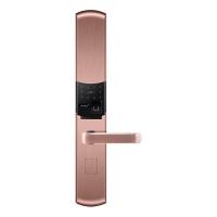 南京智能锁具-防盗门锁、铜门锁具-颛安锁具-牧羊犬W3