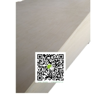 EPA 纯白杨木多层板贴面板 E0
