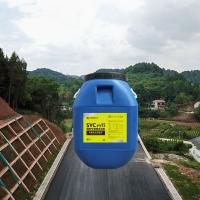 市政公路高速公路防水涂料廠家價格