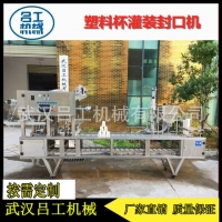 武汉吕工豆浆自动灌装封口机