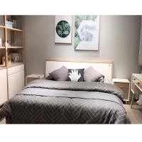 双人床1.8米现代简约板式床经济型卧室家具床