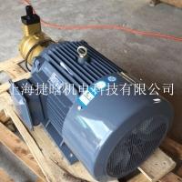 YQB100L1-4 2.2KW內軸直插式油泵電機