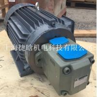 YYB160L-4 15KW直连式液压电机