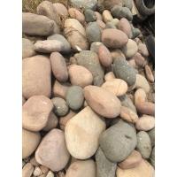批发河卵石鹅卵石园林石材