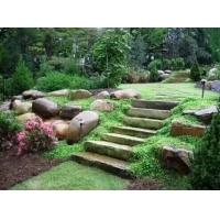 大量供应园艺石园林景观石材大型河卵石风景石