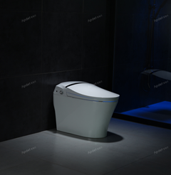 爱智贞K19025智能马桶  全自动  智能马桶工厂