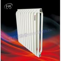 弧管散热器  北京专业生产散热器