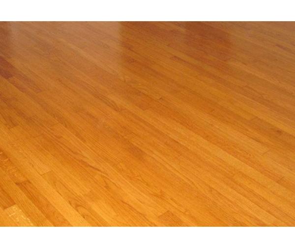 笨笨猫地板