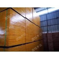 广西厂家直销桉木建筑模板 建筑清水模板 木制模板