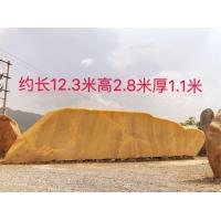 滄州黃蠟石景石招牌石