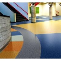 上海朋碩學校專用PVC地板