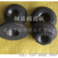 钢筋锚固板晓军制造国标螺母规格齐全