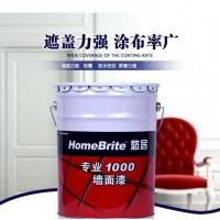 武汉东西湖市场大量批发 多乐士专业1000墙面漆