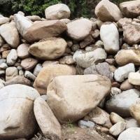 杭州天然景观石自然石产地直销鹅卵石水冲石