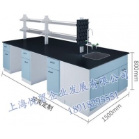 上海实验室边台-全钢实验室边台-试验室操作台定制