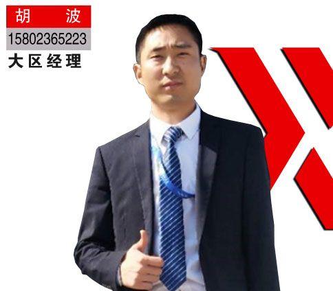 胡 波 / 广西大区经理