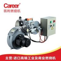 燃气燃烧器锅炉燃烧设备定型机燃烧器