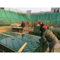 钢化膜塑面建筑模板