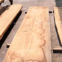 德国金威木业 欧洲橡木 白橡 板材 大板 实木 木材 现货