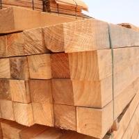 广东建筑木方 规格齐全  不变形不易断 根根好用