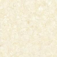 抛光砖 - 喷墨抛光砖(全瓷) FPM2891水晶白