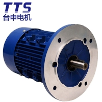 TTS台申马达直销 包装机械设备用铝壳电机