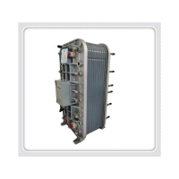 EDI膜块WS-1000