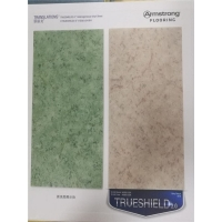 阿姆斯壮厂家直供翠丽龙耐磨pvc塑胶地板