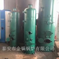 小型蒸汽锅炉 木柴煤均可燃烧节能锅炉