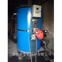 好口碑燃气蒸汽锅炉1t天然气蒸汽锅炉