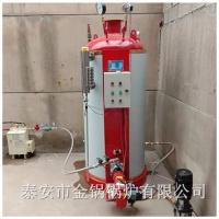 燃气热水采暖锅炉 厂家促销采暖洗浴养殖锅炉