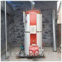 面向全国销售燃气取暖锅炉 小型燃气蒸汽锅炉