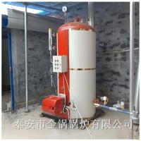 花卉大棚取暖锅炉 厂价直销 蔬菜大棚取暖设备燃气锅炉