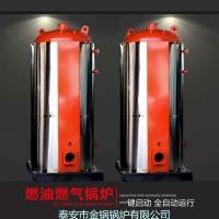 燃氣導熱油鍋爐 燃氣導熱油爐 120萬大卡燃氣熱水鍋爐