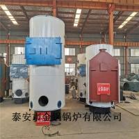 现货供应生物质锅炉 300公斤蒸发量生物质锅炉