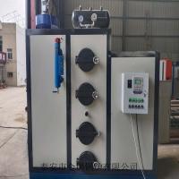 现货生物质锅炉生物质颗粒燃料蒸汽锅炉