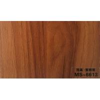MS-6613