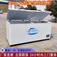 食品冷冻柜 速冻冰柜生产厂家 商用冷柜批发