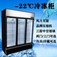 河南三門立式冷凍柜風冷冰柜凍品展示冰箱