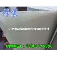 DTM防水 聚酯复合高分子防水卷材 涤纶卷材