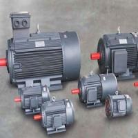 供西藏电机和拉萨电动机